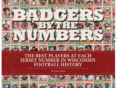 Badgers by the Numbers - Book