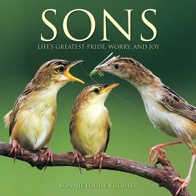 Sons: Life's Greatest Pride, Worry and Joy - Book